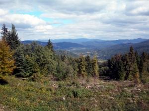 Pohľad na údolie Veľkej Lesnej z hrebeňa Spišskej Magury